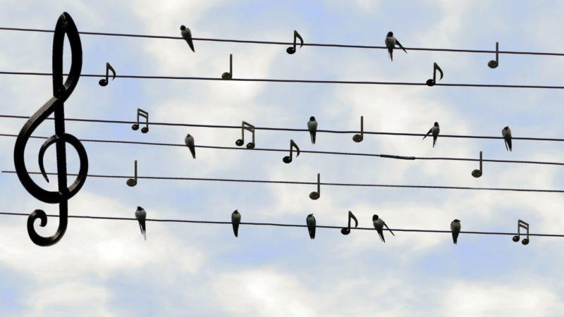 Кто музыку включает, тот и платит